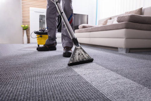 professional cleaner steaming carpet in a living room
